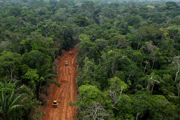 Oil company breaks agreement, builds big roads in Yasuni rainforest